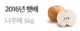 2016햇배 나주배 5KG 특가_premium banner_5_쇼핑여행공연_/deal/adeal/1400037