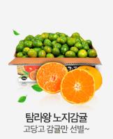 [무료배송]조생 첫수확! 탐라왕 감귤 5kg 로얄과 특가!_today banner_5_/deal/adeal/1510558
