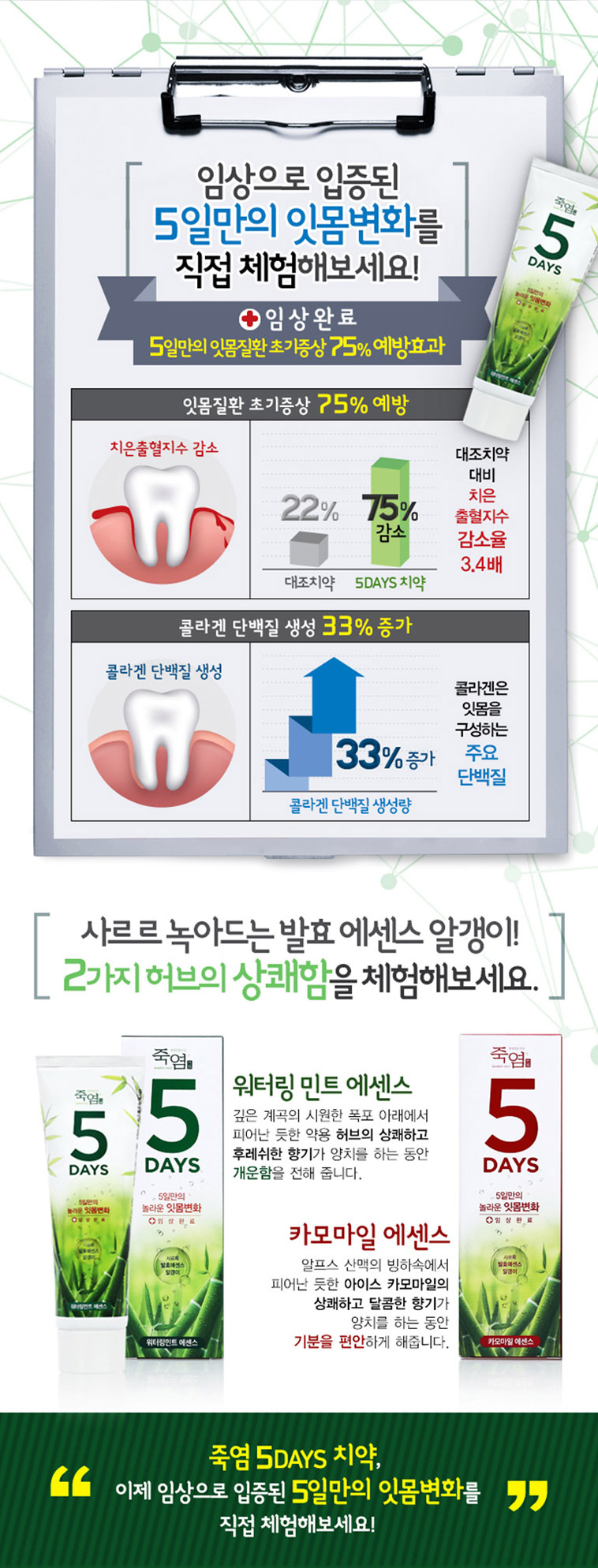 [스타쿠폰] 죽염 칫솔/치약 모음 - 상세정보