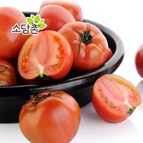 [무료배송] 정품 찰 토마토10kg 한정