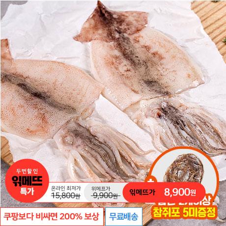 [읶메뜨특가] 국내산 손질오징어 1kg