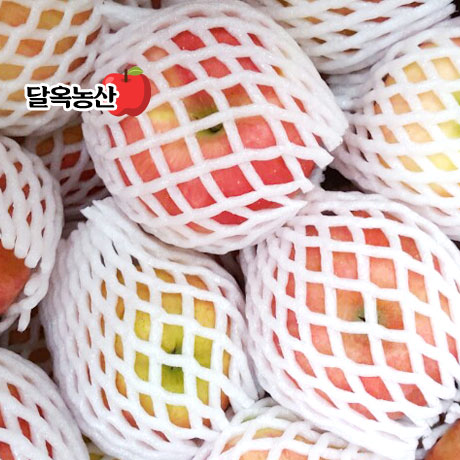 꿀줄줄! 햇 빨간 가정용 햇 사과 3kg