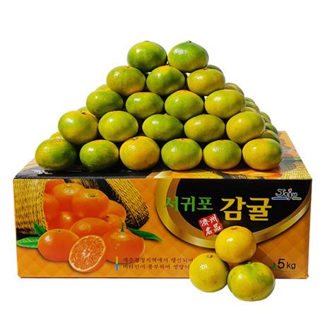 [무료배송] 제주 햇 노지 감귤 5kg
