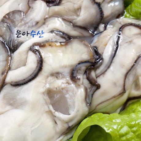싱싱한 통영 생굴1kg