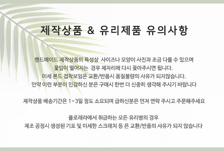 플로레라! 트로피컬 리프 모음전 - 상세정보