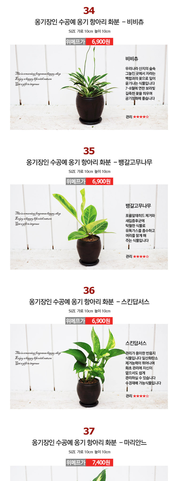 공기정화식물 장인 수공예 옹기화분 - 상세정보
