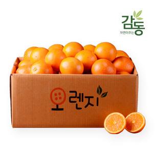 13brix↑ 블랙라벨 오렌지 50과 한정