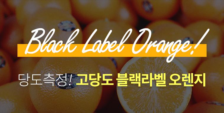 13brix↑ 블랙라벨 오렌지 50과 한정 - 상세정보