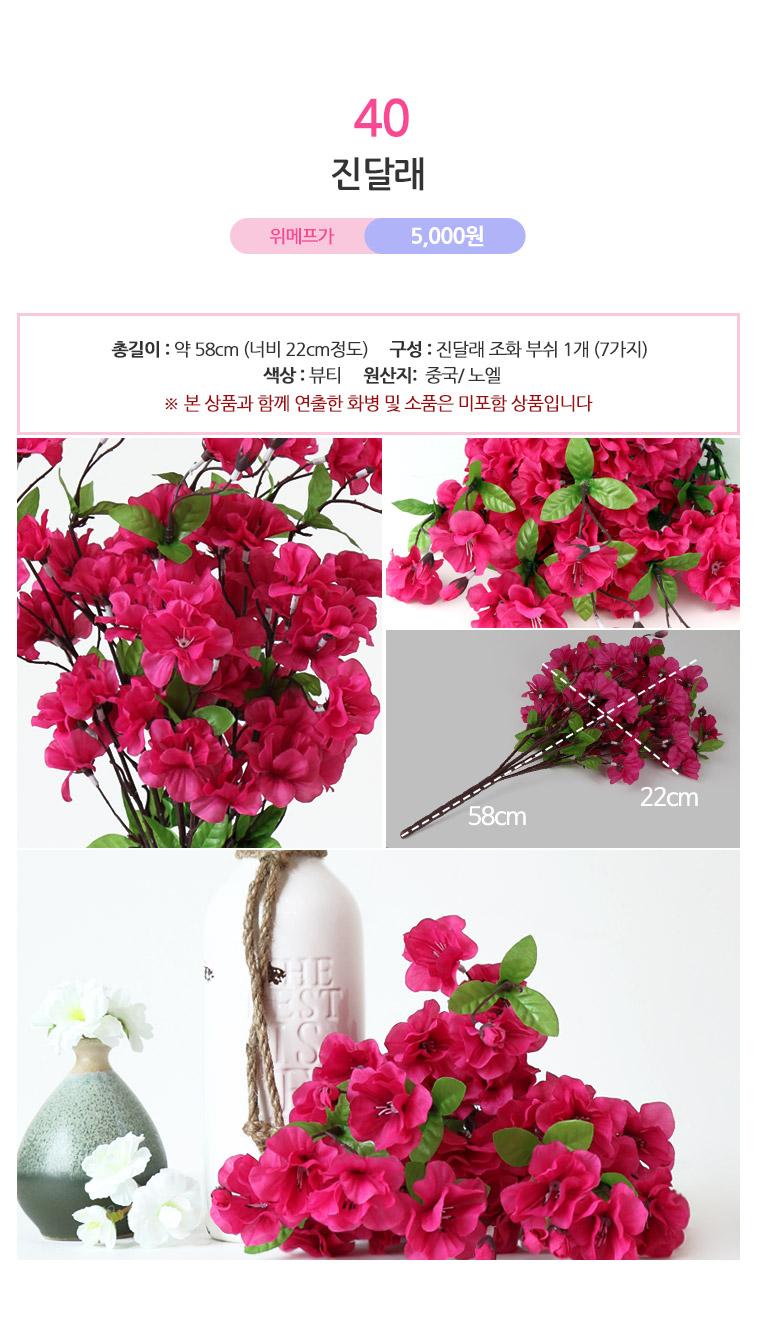 노엘 인테리어조화/성묘꽃 - 상세정보