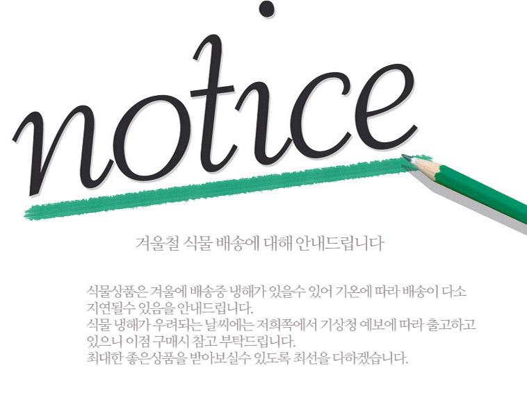미니 유리화분 다육이 모음 - 상세정보