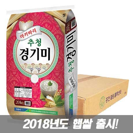 농협 추청 경기미 10kg+10kg