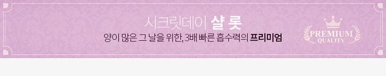 [스타쿠폰] 시크릿데이 생리대 SET - 상세정보