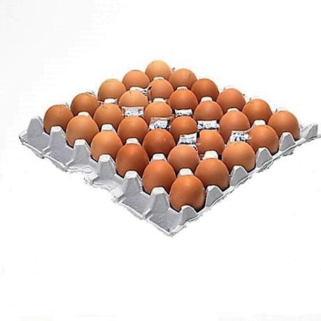 맛있는 평강 구운란 30알 한정특가