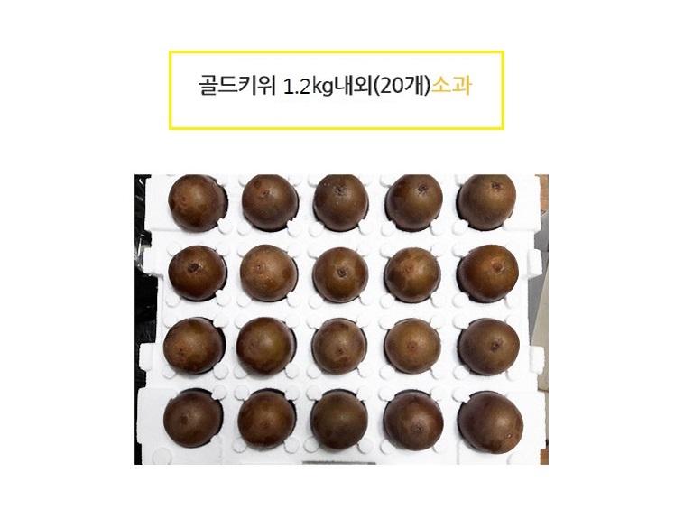 [메리1212데이] 골드키위 1.2kg 20개 - 상세정보