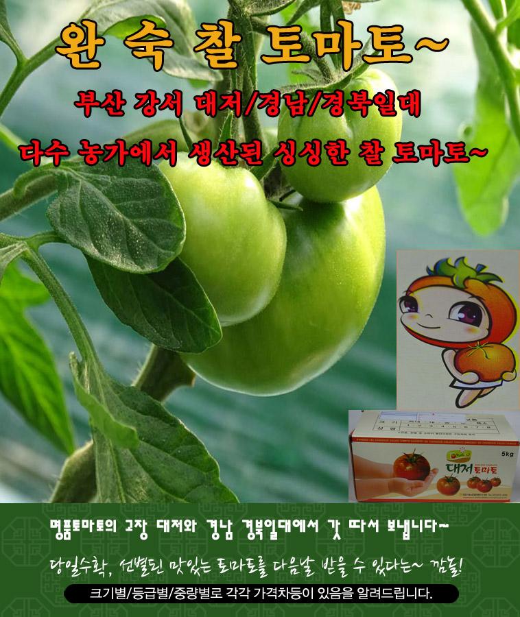 [명예의전당] 대저토마토 2kg 랜덤과 - 상세정보