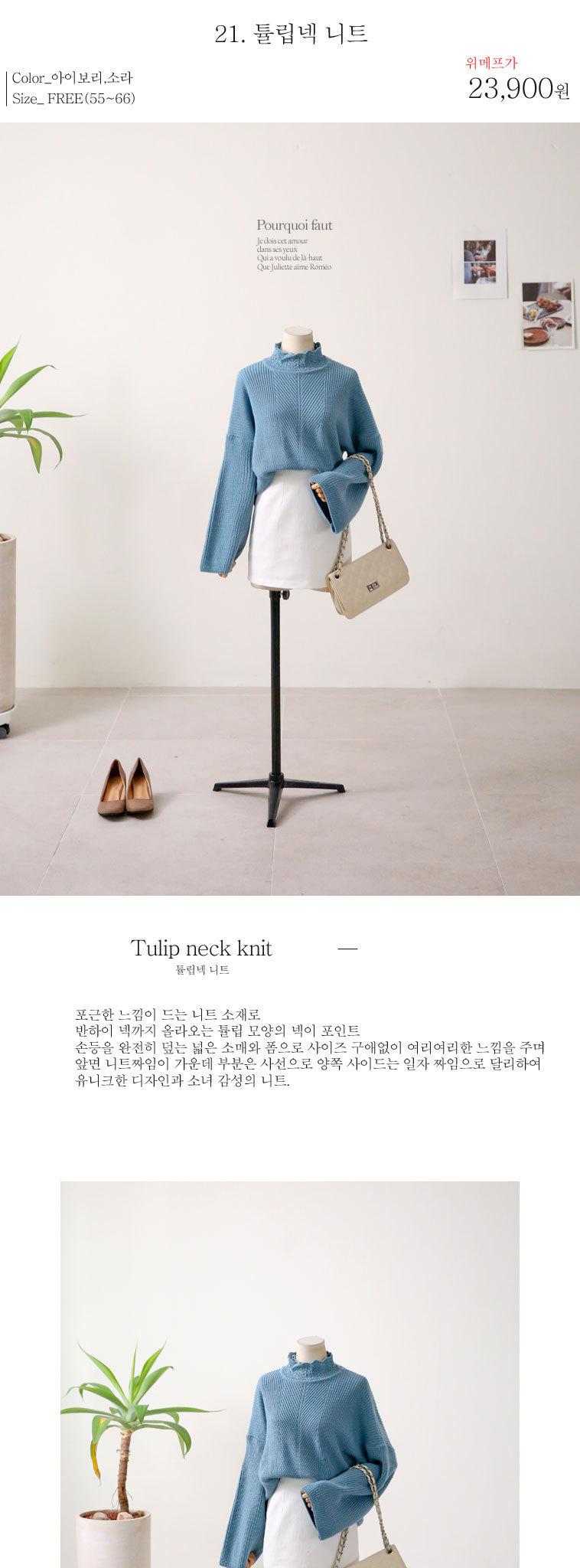 [무료배송] 타라디토 ALL특가로 드림 - 상세정보