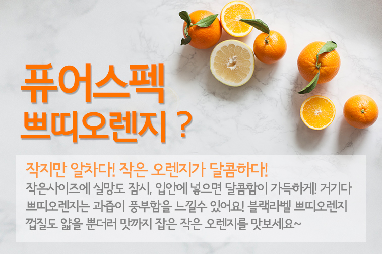 [무료배송] 퓨어스펙 오렌지 40입 - 상세정보