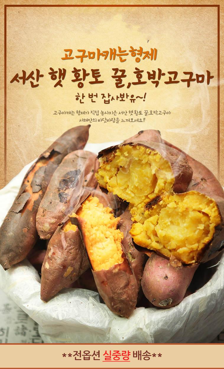 고구마캐는형제 꿀&호박 고구마 모음 - 상세정보