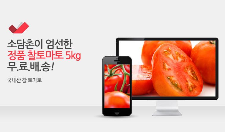 오직정품만! 햇 찰 토마토5kg 특가 - 상세정보