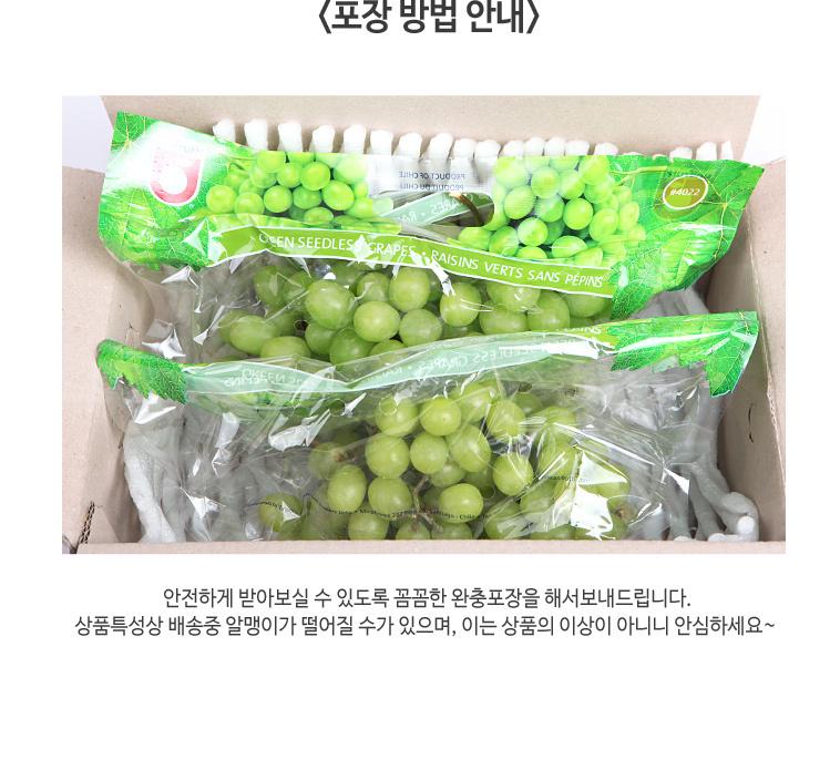 [무료배송] 거봉1kg+청포도1kg XL만! - 상세정보