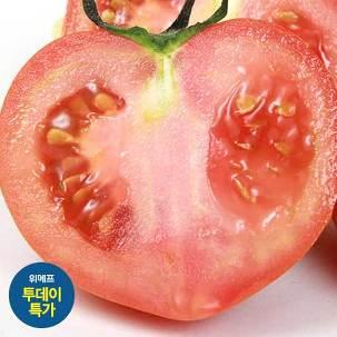 [투데이특가] 찰토마토5kg 한정특가!