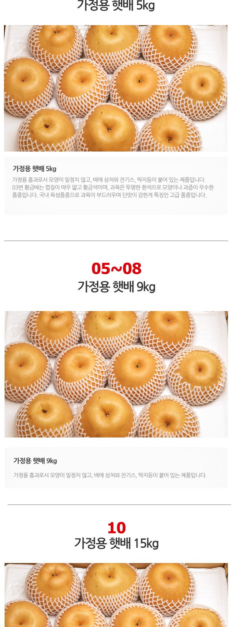 [먼지제로] 16년 햇 나주배10kg - 상세정보