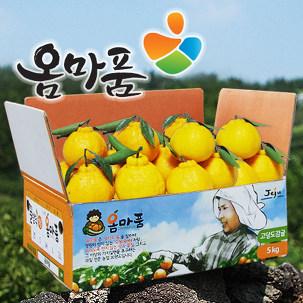 꿀당도 옴마품 한라봉10kg 천혜향