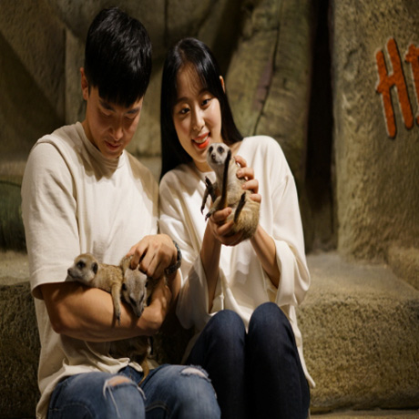 [부천] 하이주 실내동물원 입장권