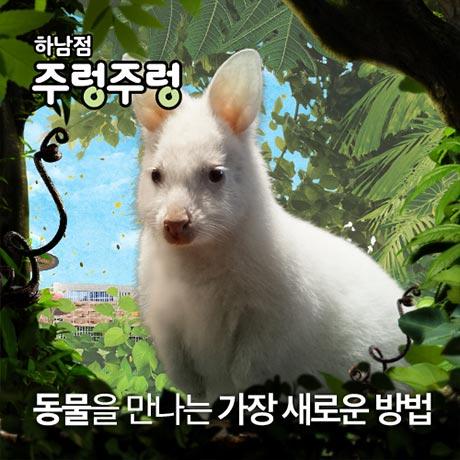 [하남] 주렁주렁 실내동물원 입장권