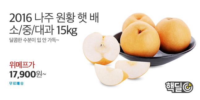 [핵딜] 햇 꿀물 나주배15kg 한정특가