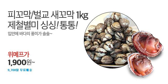 크기대박! 남해안 햇피꼬막 1kg 특가