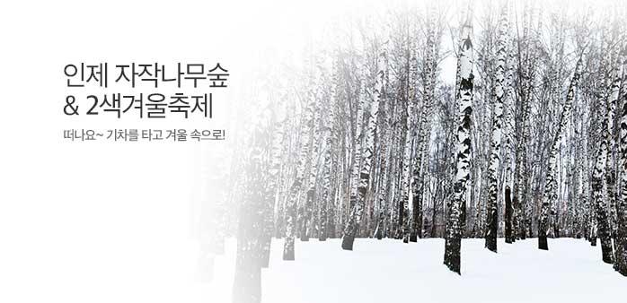 [플레이특가] 인제 자작나무숲 당일_best banner_0_내륙여행_/deal/adeal/1578454