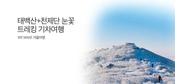 태백산눈꽃축제와 트레킹 기차여행_best banner_0_내륙여행_/deal/adeal/1627837