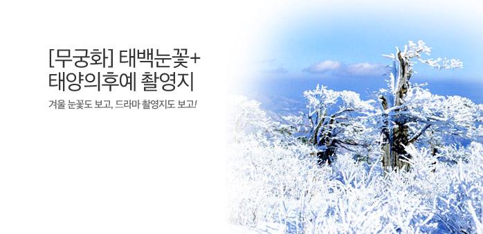 태백산 눈꽃축제+드라마촬영지 기차_best banner_0_내륙여행_/deal/adeal/1619381