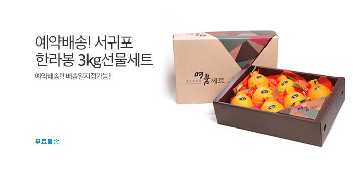 예약배송!서귀포 한라봉 3kg선물세트_best banner_0_TODAY 추천^식품/생활/유아동_/deal/adeal/1617735