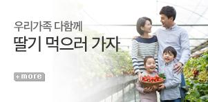 [기획전] 딸기체험 기획전