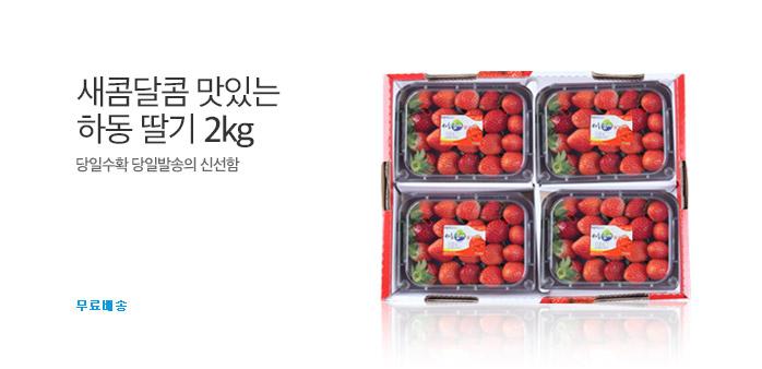 [주간특가] 농협 딸기 2KG(500GX4팩)_best banner_0_식품_/deal/adeal/1730877
