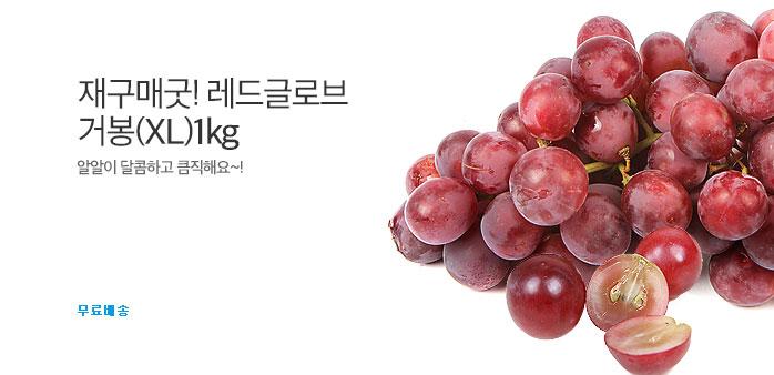 재구매굿! 레드글로브 거봉(XL) 1kg~_best banner_0_식품_/deal/adeal/1854816