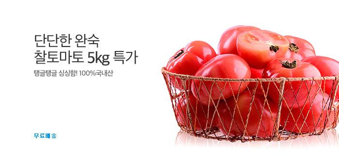 [푸드데이]단단한 완숙 찰토마토5kg _best banner_0_TODAY 추천^식품/생활/유아동_/deal/adeal/1840436