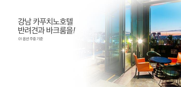 [10%쿠폰] 신논현 호텔카푸치노_best banner_0_호텔_/deal/adeal/1672550