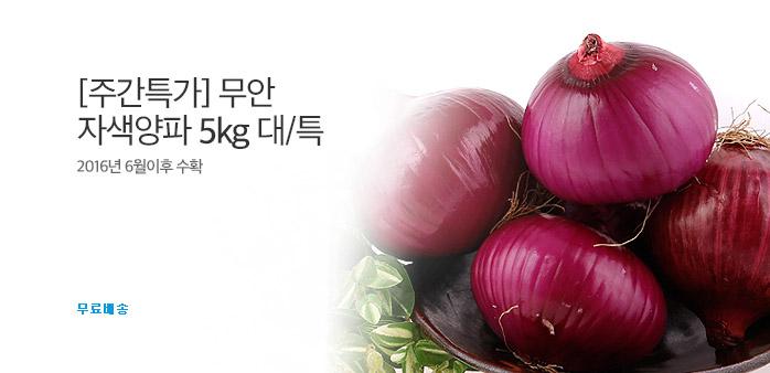 [주간특가] 무안 자색양파 5kg 대/특_best banner_0_식품_/deal/adeal/1871340