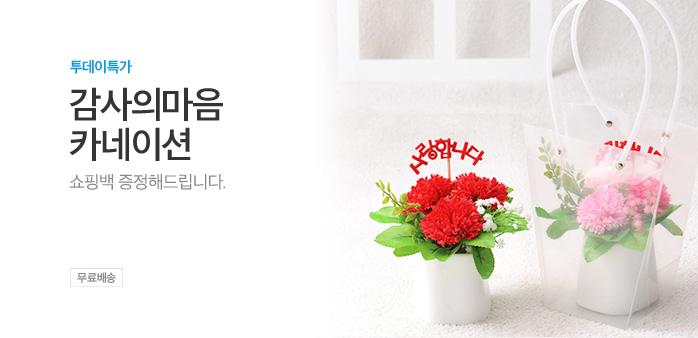 [투데이특가] 감사의마음 카네이션_best banner_0_취미/문구/오피스_/deal/adeal/1987795