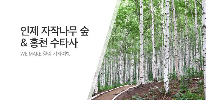 [투데이특가] 인제자작나무숲 당일_best banner_0_내륙여행_/deal/adeal/1997492